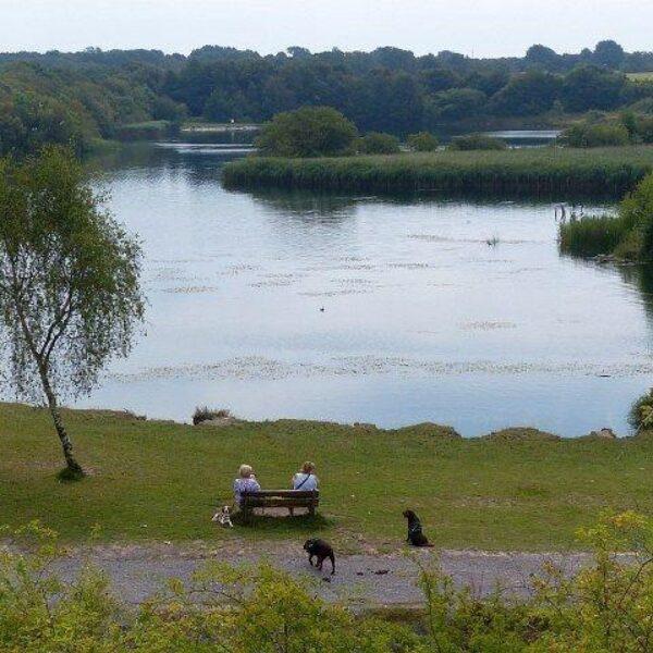 Cosmeston Park And Lakes photo 2