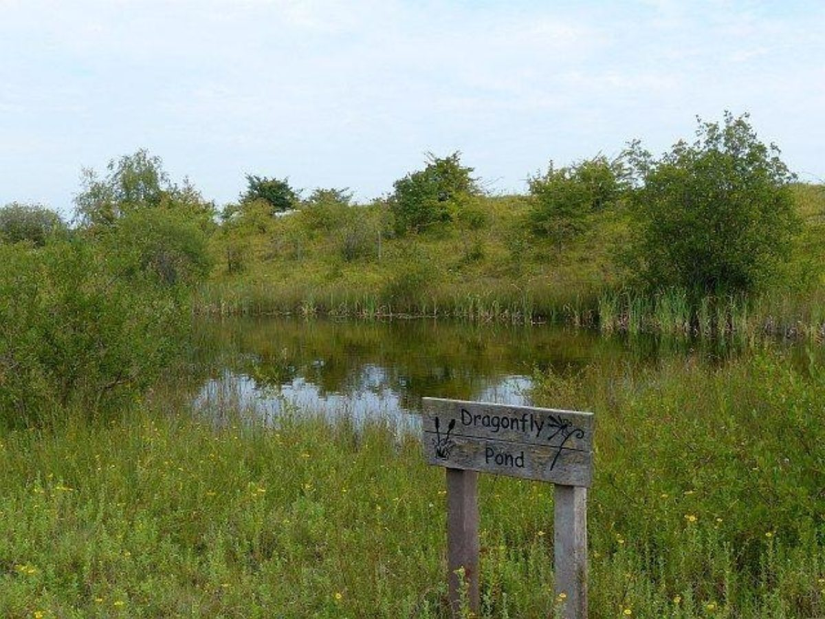 Cosmeston Park And Lakes large photo 1