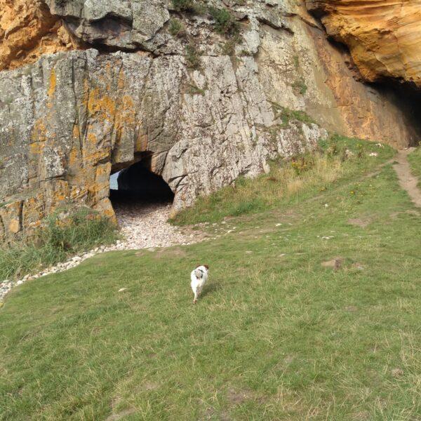 Covesea Caves photo 1