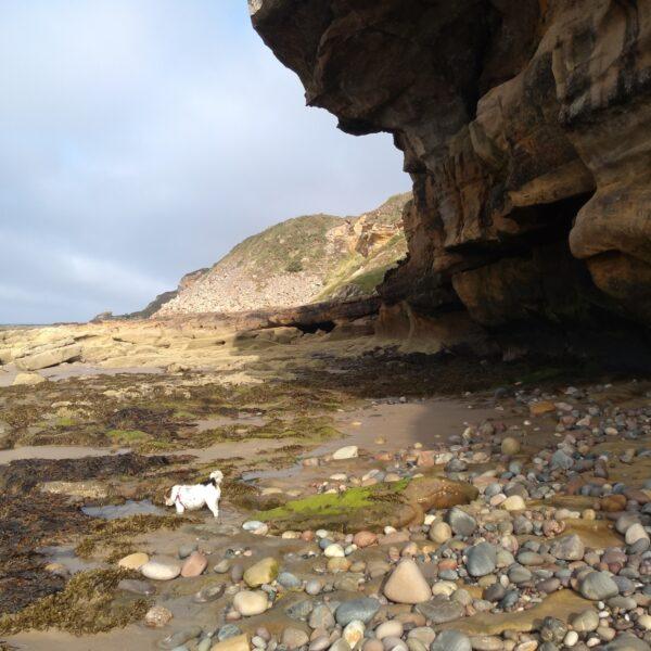 Covesea Caves photo 2