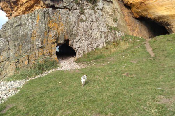 Covesea Cavesphoto