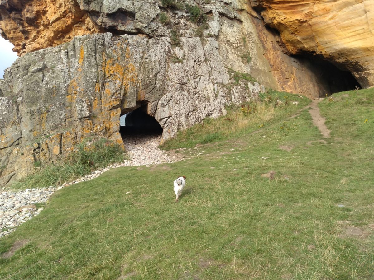 Covesea Caves large photo 1