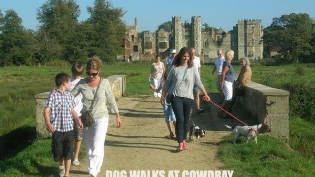 Dog walk at Cowdray Park To Midhurst Old Town