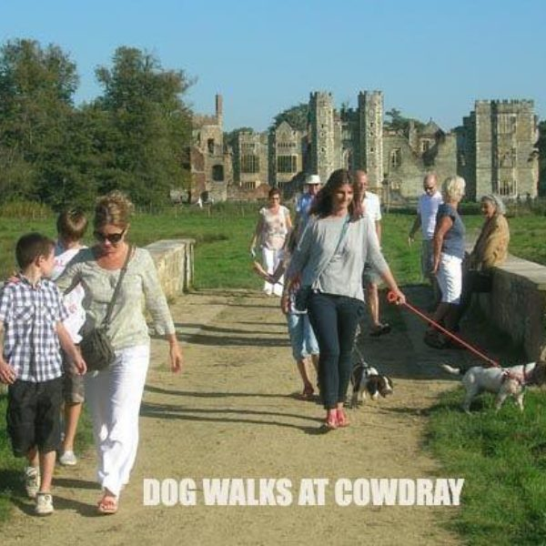 Cowdray Park To Midhurst Old Town photo 1