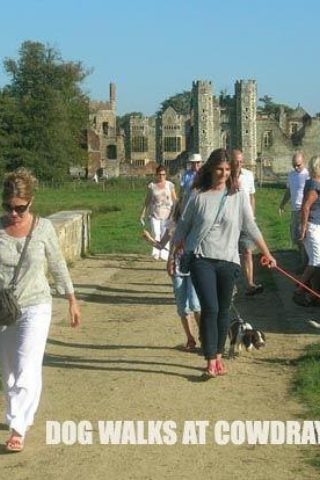 Dog walk at Cowdray Park To Midhurst Old Town photo