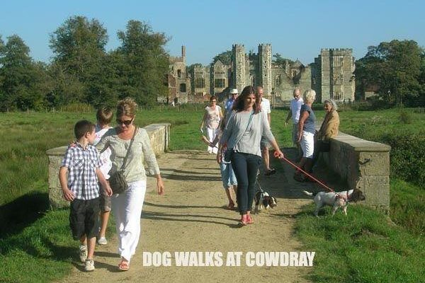 Cowdray Park To Midhurst Old Townphoto