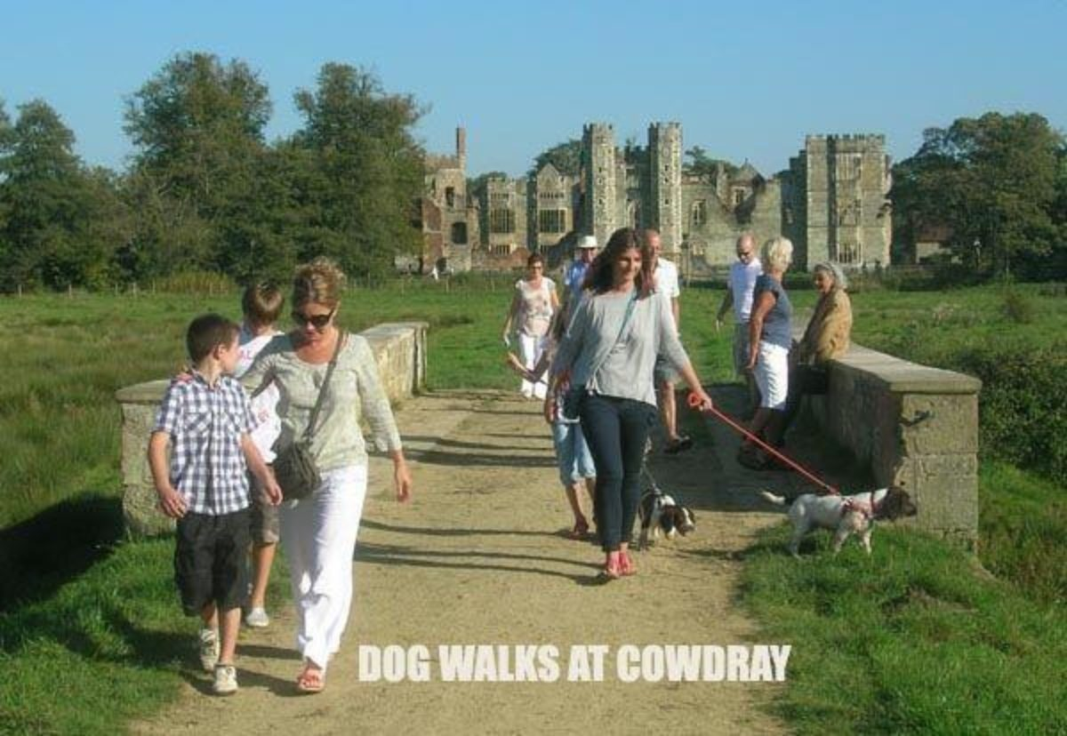 Cowdray Park To Midhurst Old Town large photo 1