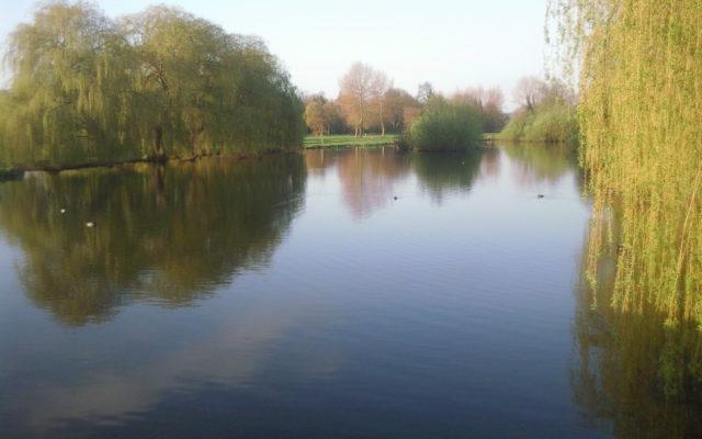 Foots Cray Meadows Dog walk in Kent