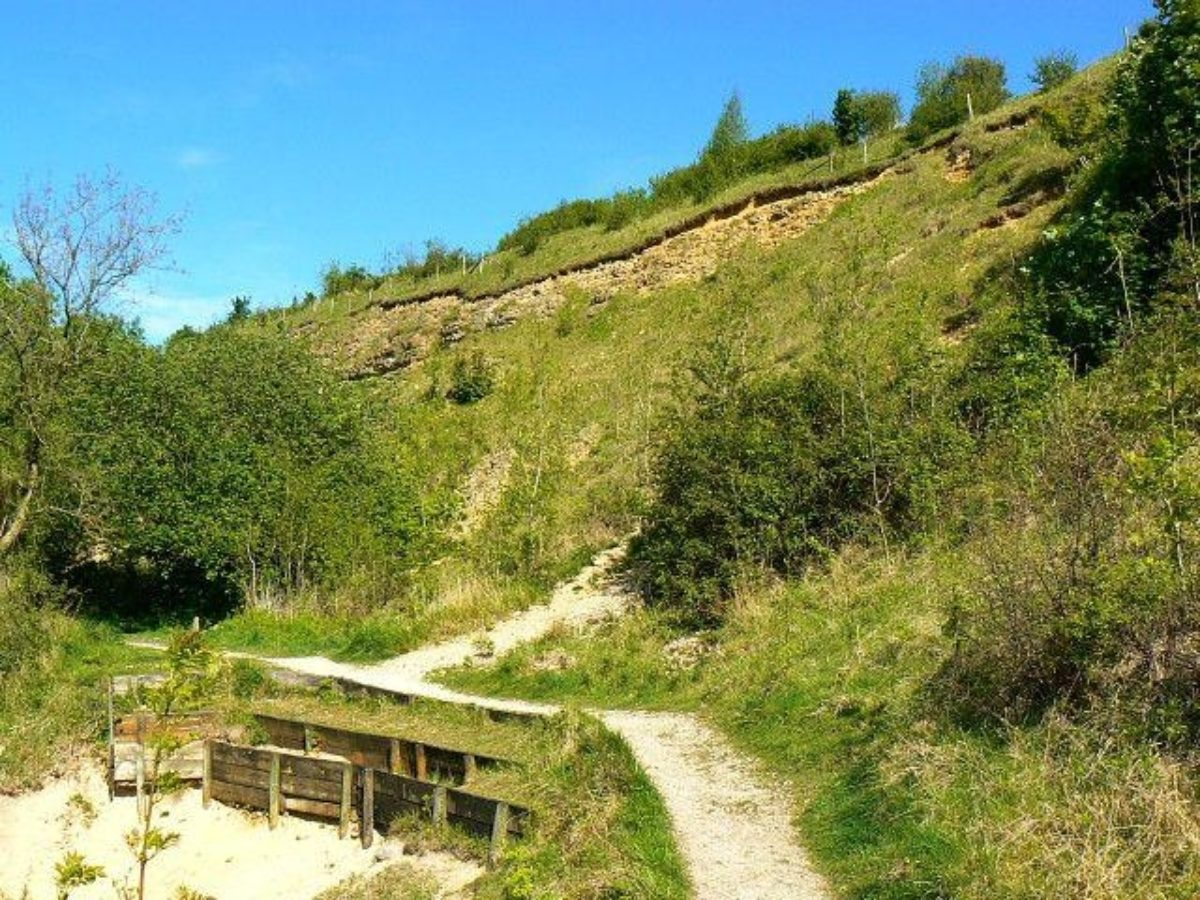 Crickley Hill Country Park large photo 1