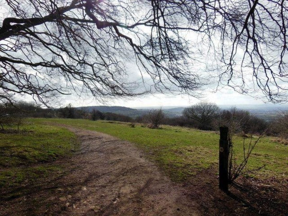 Crickley Hill Country Park large photo 3