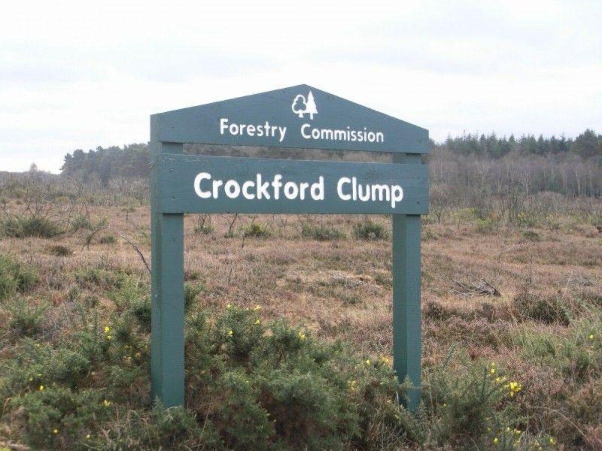 Crockford Clump large photo 1