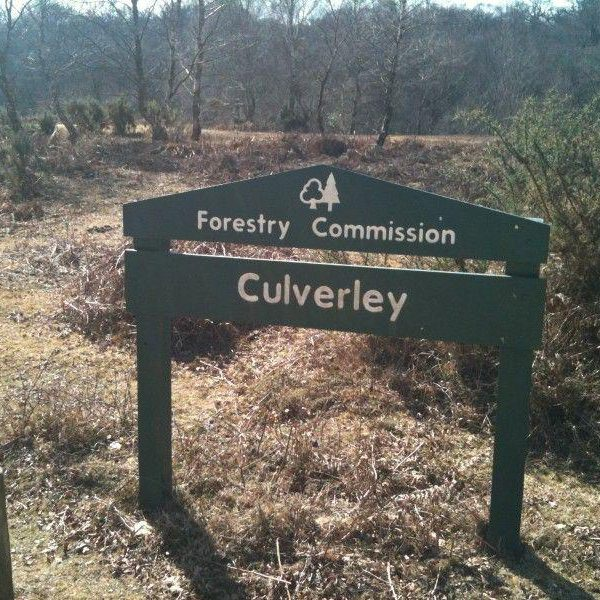 Culverley (New Forest) photo 2