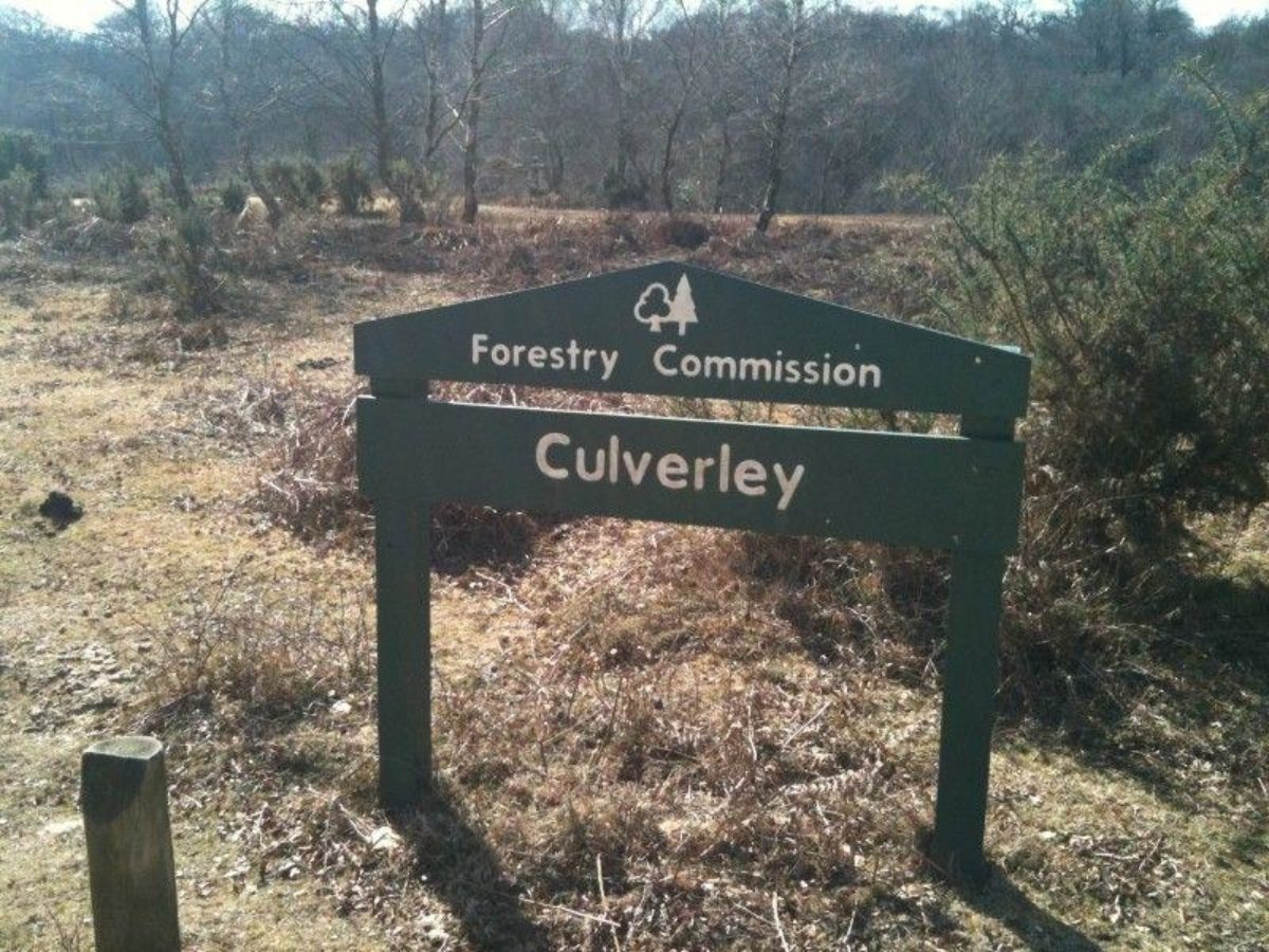 Culverley (New Forest) large photo 2