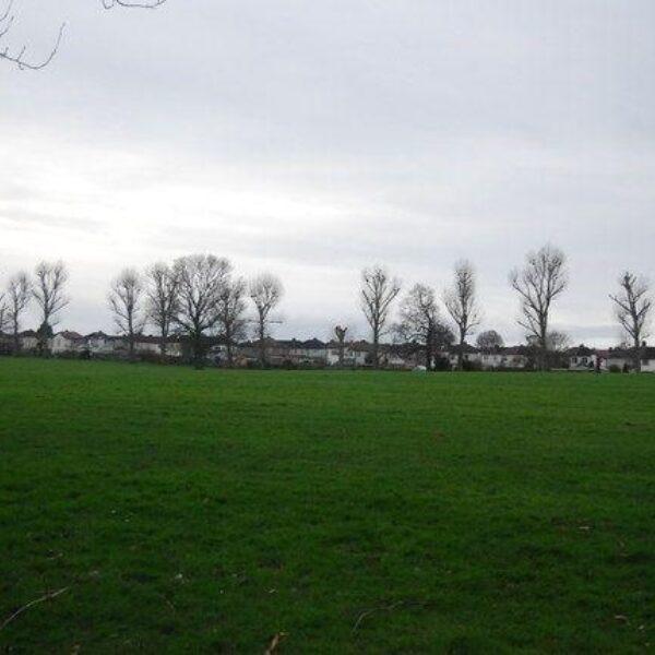Dog walk at Danson Park, Bexley