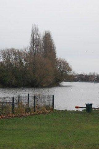 Dog walk at Danson Park, Bexley photo
