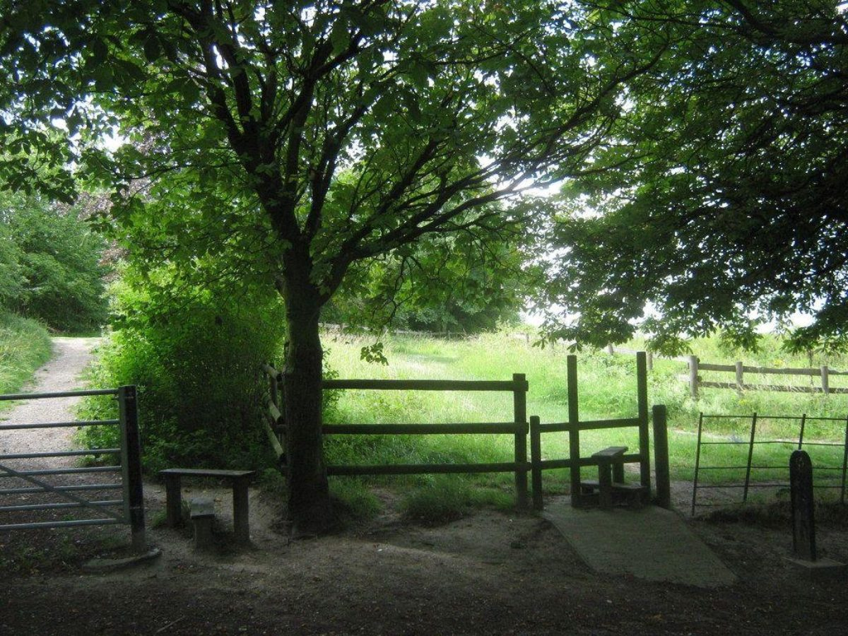 Darenth Country Park large photo 5