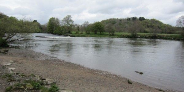 Dartington To Totnes Along The River Dart
