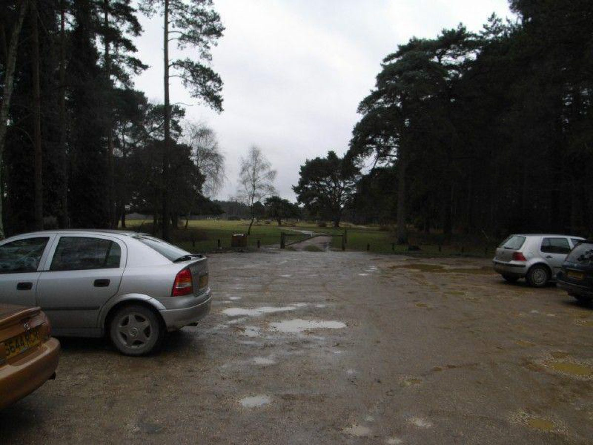 Deerleap (New Forest) large photo 8