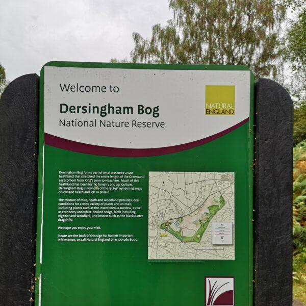Dersingham Bog photo 8