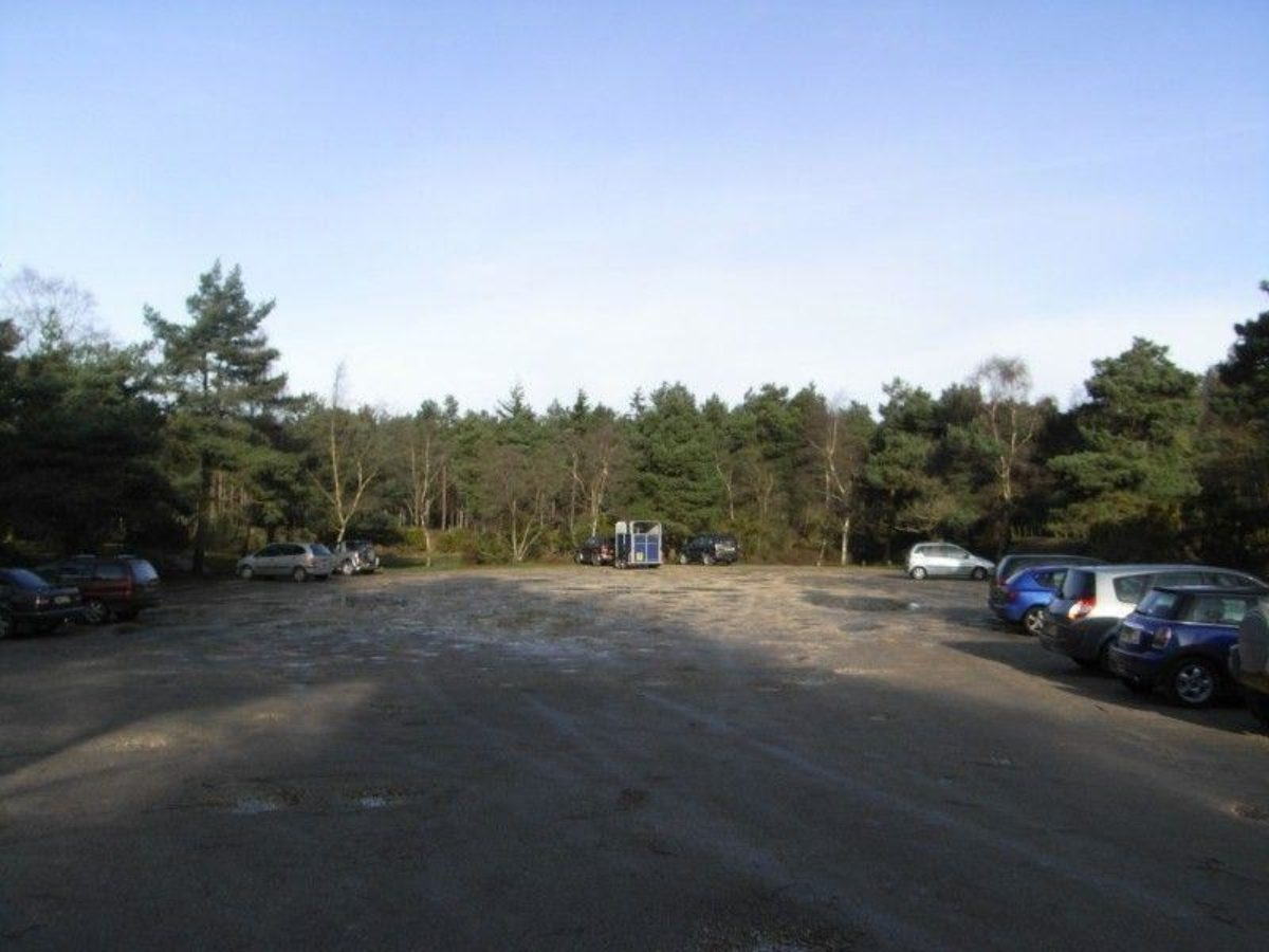 Dibden Inclosure (New Forest) large photo 2
