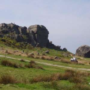 Dick Hudsons To Cow & Calf