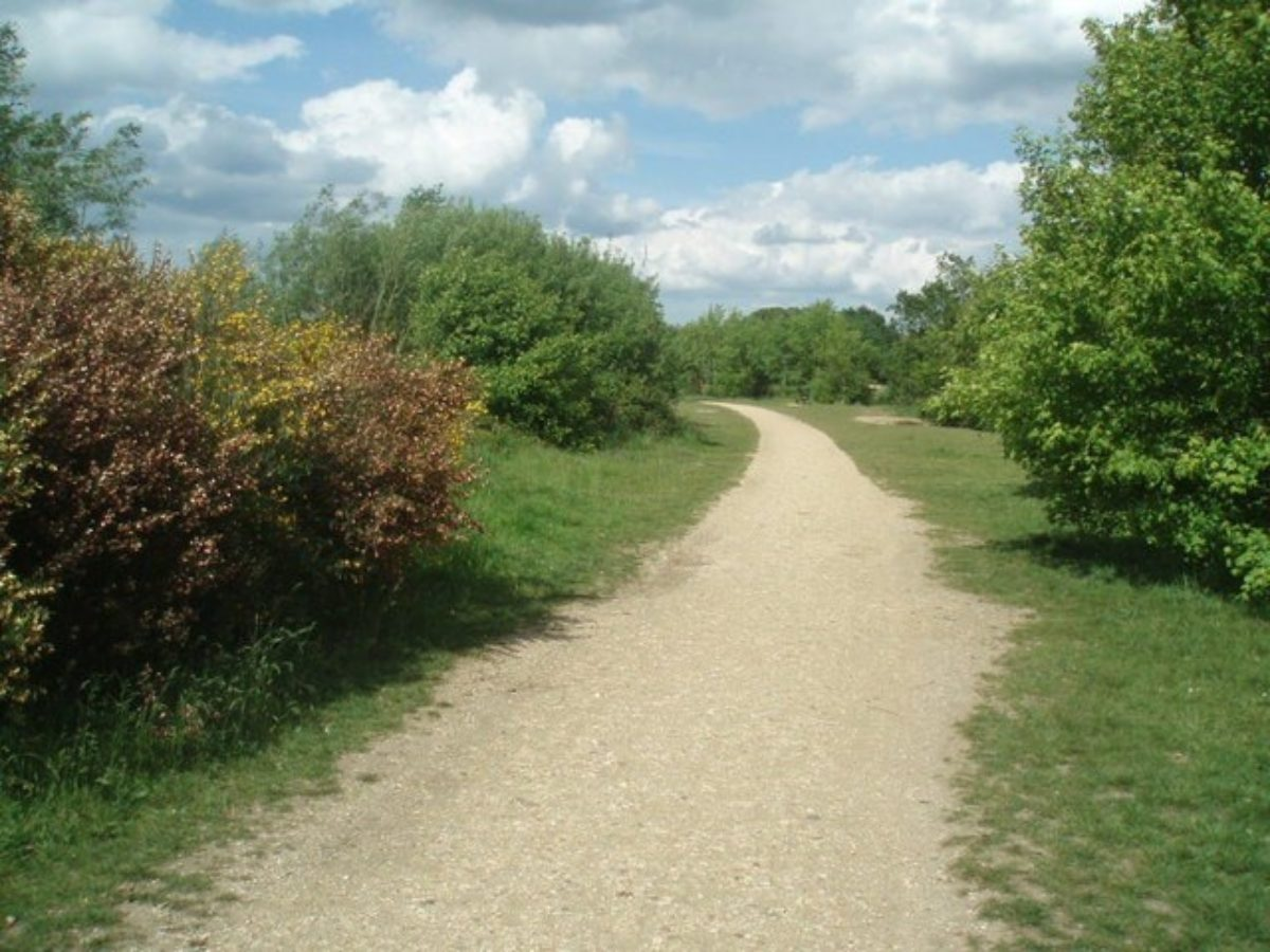 Dinton Pastures Country Park large photo 3