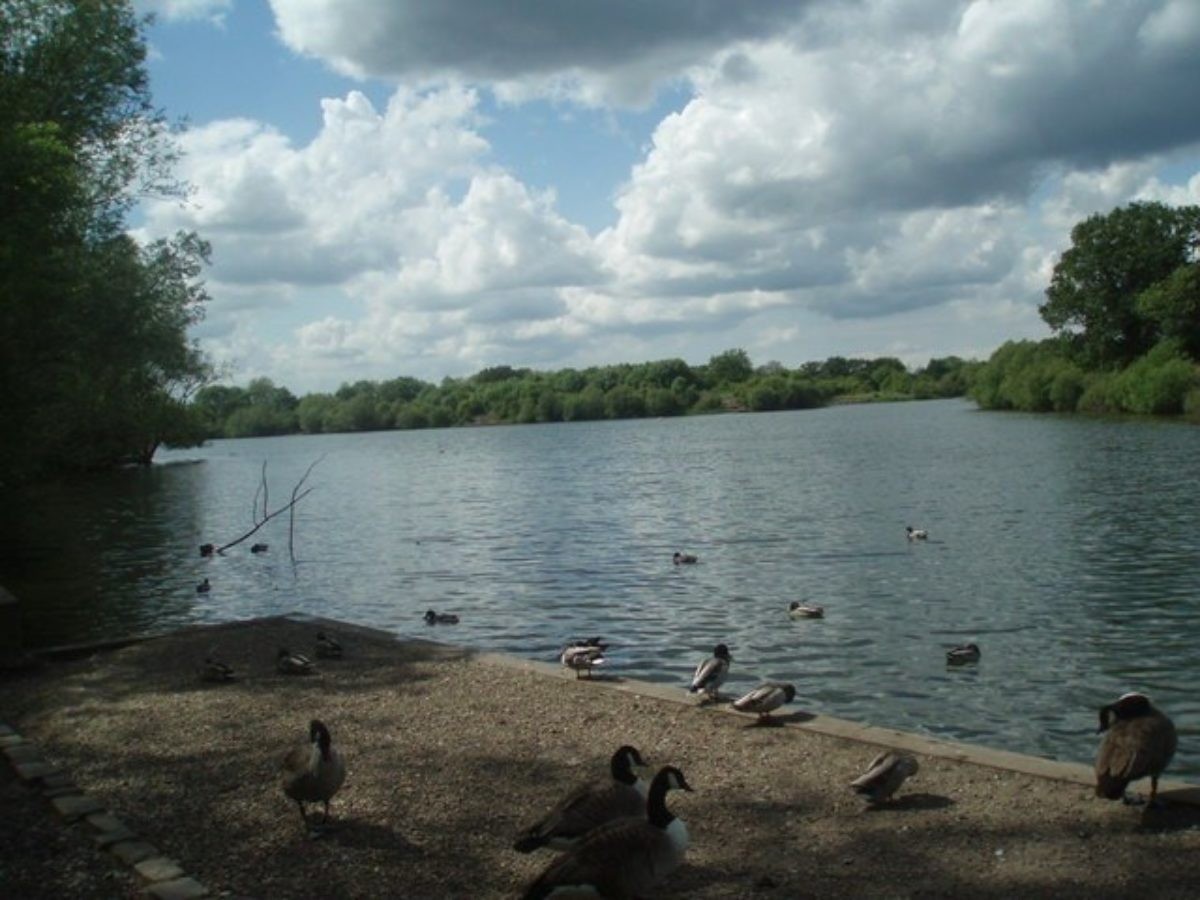Dinton Pastures Country Park large photo 4