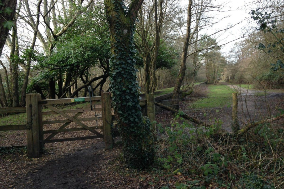 Disused Railway At Burley large photo 8