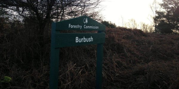 Disused Railway At Burley
