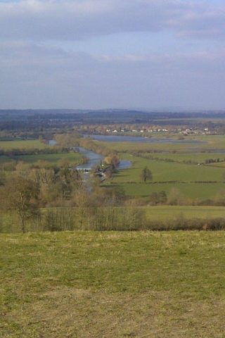 Dog walk at Dorchester On Thames To Wittingham Clumps photo
