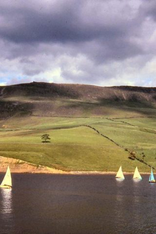 Dog walk at Dovestone Reservoir photo