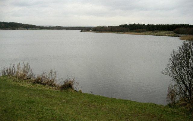 Druridge Bay Country Park Dog walk in Northumberland