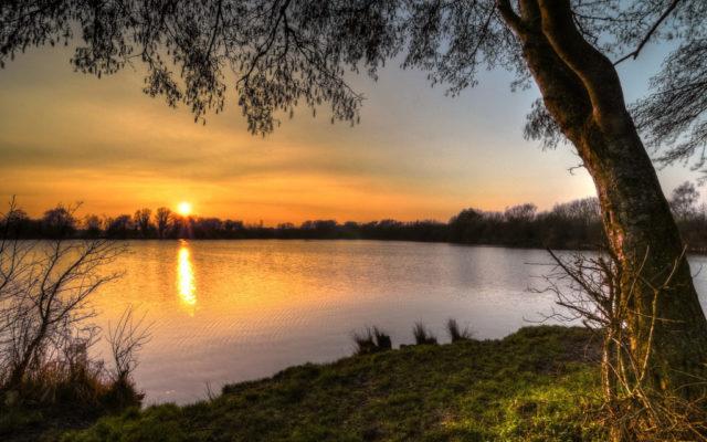 Ducklington Lake, Witney Dog walk in Oxfordshire