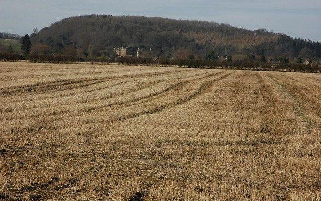 Dumbleton Hall Grounds Dog walk in Worcestershire
