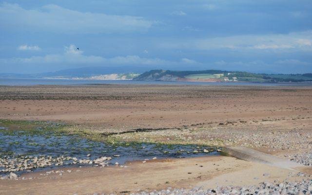Dunster Beach Dog walk in Somerset