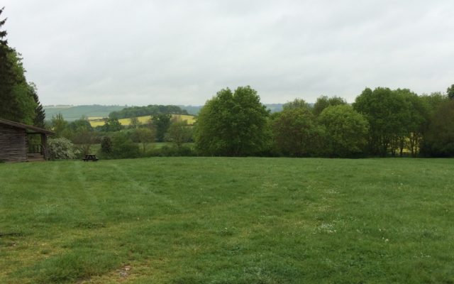 East Carlton Park Dog walk in Leicestershire
