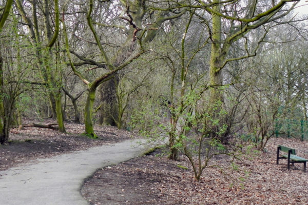 Eastham Country Parkphoto