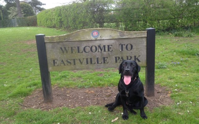 Eastville Park Dog walk in Bristol (City of)