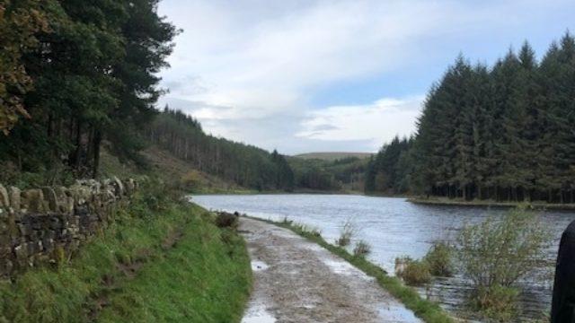 Dog walk at Entwistle and Turton Reservoir