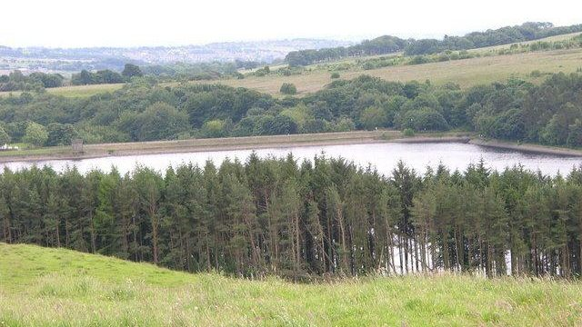 Dog walk at Entwistle Reservoir