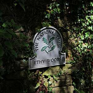 Ethy Woods, Lostwithiel