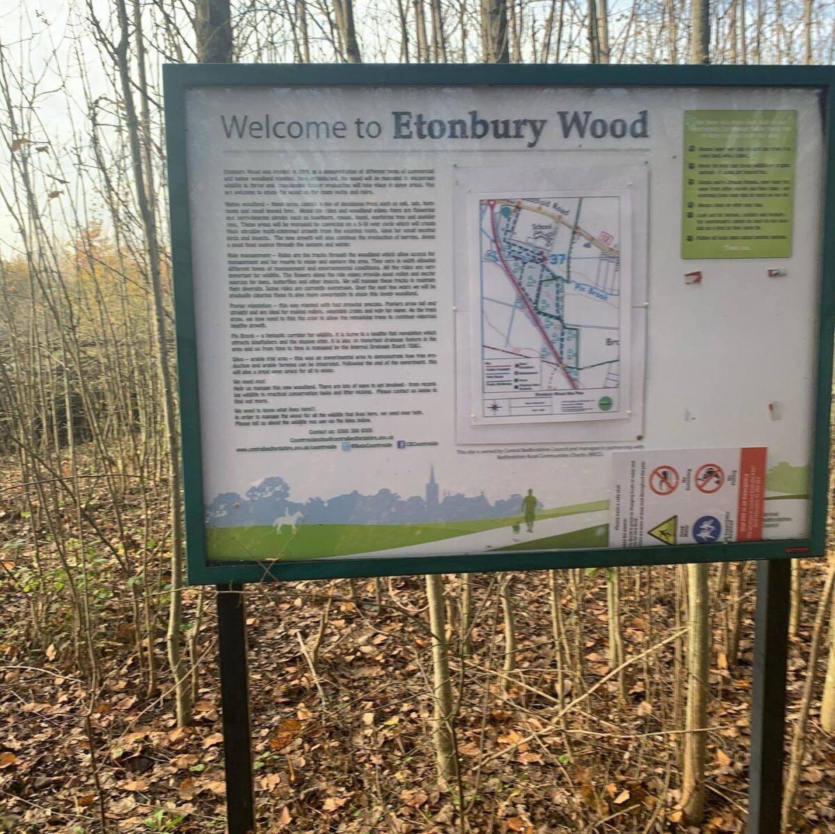 Etonbury Woods & Nature Reserve large photo 3