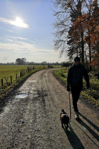 Dog walk at Exton Estate photo