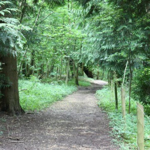 Farley Mount Country Park photo 9