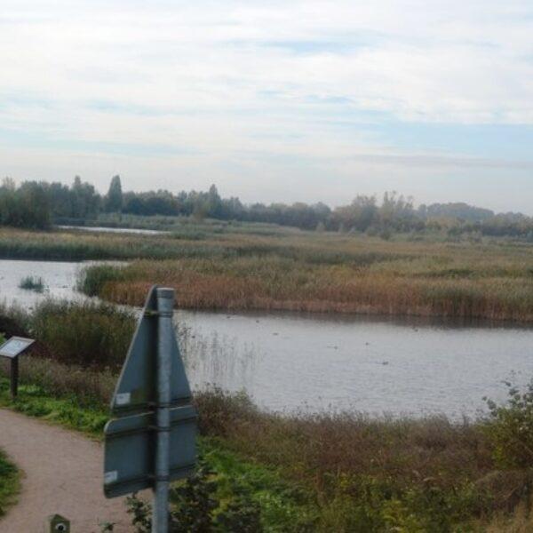 Fen Drayton Lakes photo 2