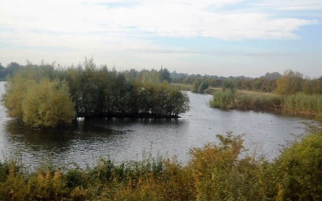 Fen Drayton Lakes Dog walk in Cambridgeshire