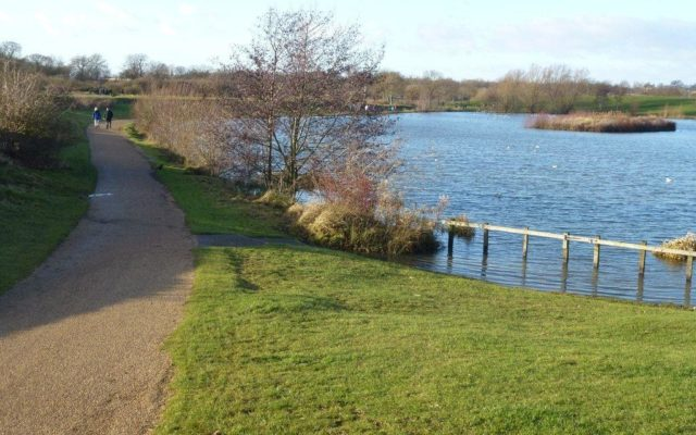 Ferry Meadows Country Park Dog walk in Cambridgeshire