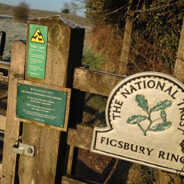 Dog walk at Figsbury Ring