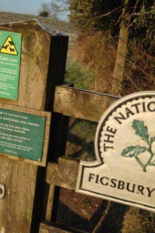 Dog walk at Figsbury Ring photo