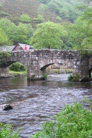 Dog walk at Fingle Bridge photo